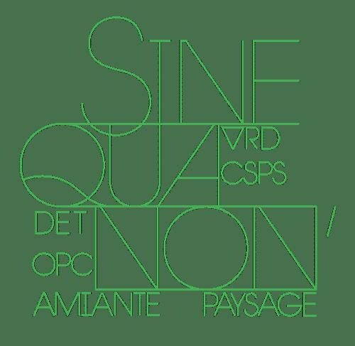 logo de Sinequanon'